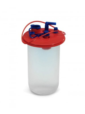 Disposable bag for collecting liquid waste