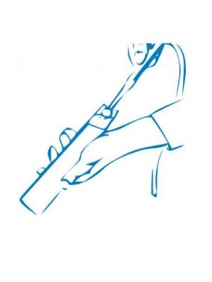 Housse de protection à usage unique pour caméras intra-orales modèle Castellini Videorcam 2