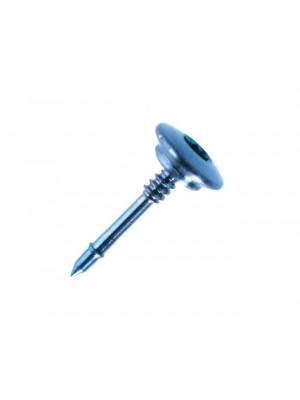 Blister da 10 Micropins in titanio, lunghezza 5 mm